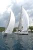 Alfa auto Sailing Team